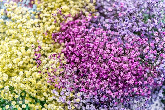 Mooie kleine roze en gele bloemen