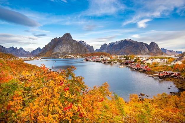 Mooie kleurrijke mening van reine-landschap in lofoten-eilanden