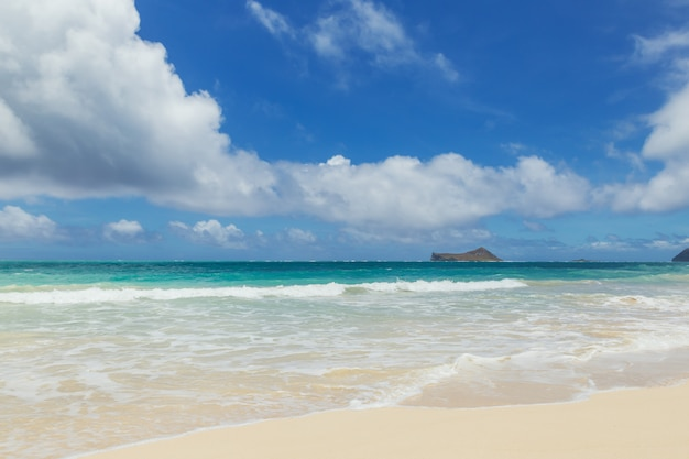 Mooie kustlijn op tropisch zandstrand in oahu eiland, hawaii