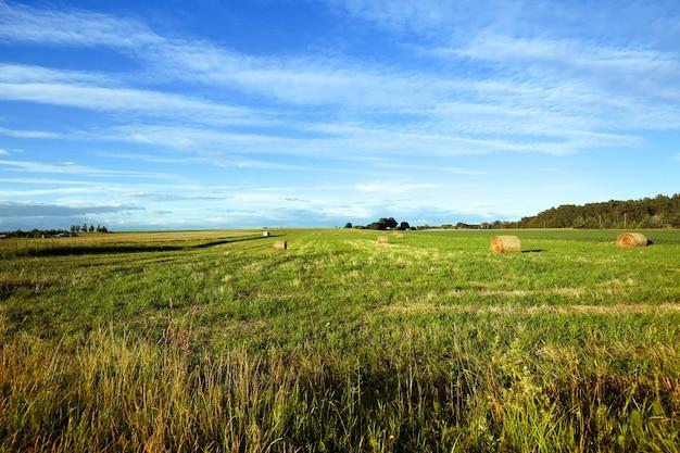 Mooie landbouwgrond weide landschapsmening