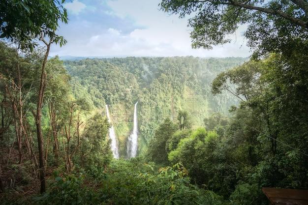Mooie landschapsaard van regenwoud en bergen