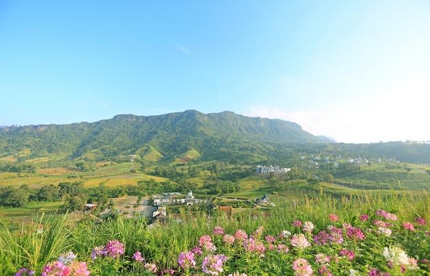 Mooie landschapsmening van bloem met blauwe hemelberg en dorp in thailand.