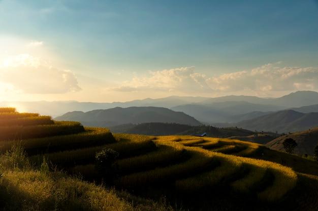 Mooie landschapsmening van rijstterrassen in chiang mai, thailand.