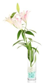 Mooie lelie in glasvaas die op wit wordt geïsoleerd