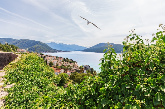 Mooie luchtfoto kust uitzicht op herceg novi, montenegro