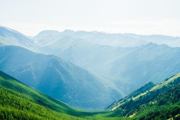 Mooie luchtfoto naar groene bosvallei en grote besneeuwde bergen ver in zonnige dag.