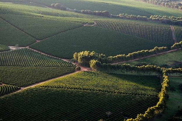 Mooie luchtfoto van een groen veld overdag