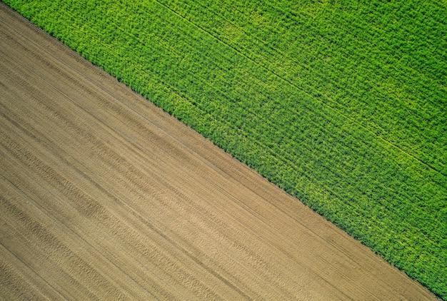 Mooie luchtfoto van een groene landbouwgebied