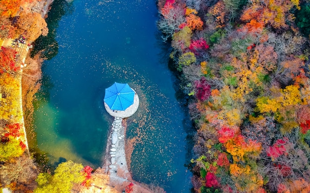 Mooie luchtmening van het nationale park van het autumseizoen najjangsan, zuid-korea.