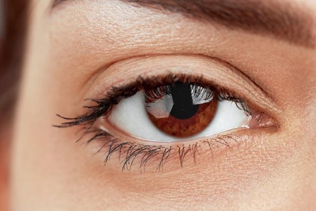 Mooie macro-opname van vrouwelijk oog met extreem lange wimpers en zwarte voeringmake-up. make-up met een perfecte vorm en lange wimpers. cosmetica en make-up.