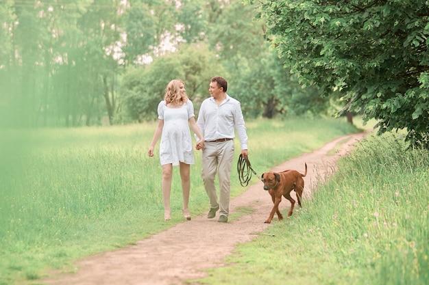 Mooie man en zijn zwangere vrouw met hun hond op een wandeling in het park