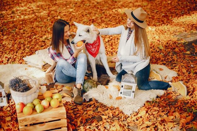 Mooie meiden hebben plezier in een herfstpark