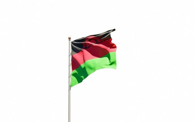 Mooie nationale vlag van malawi