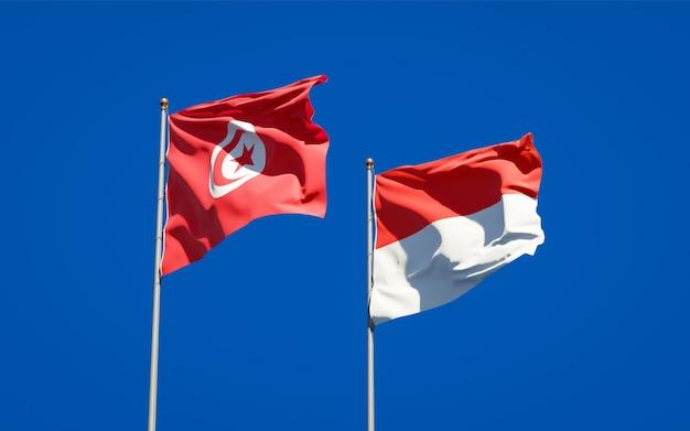 Mooie nationale vlaggen van tunesië en indonesië samen op blauwe hemel