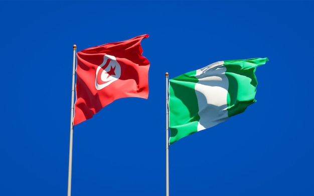 Mooie nationale vlaggen van tunesië en nigeria samen op blauwe hemel