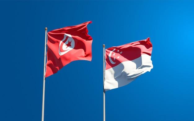 Mooie nationale vlaggen van tunesië en singapore samen