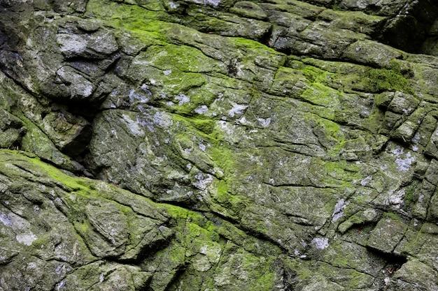 Mooie natuursteen met groen mos en korstmossen.