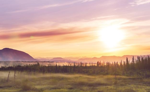 Mooie ochtendscène in de bergen. mist bij zonsopgang.