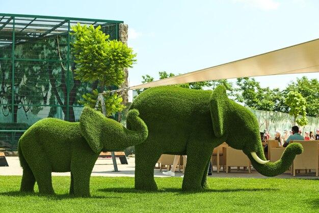 Mooie olifant vormige topiaries in dierentuin op zonnige dag. landschapstuinieren