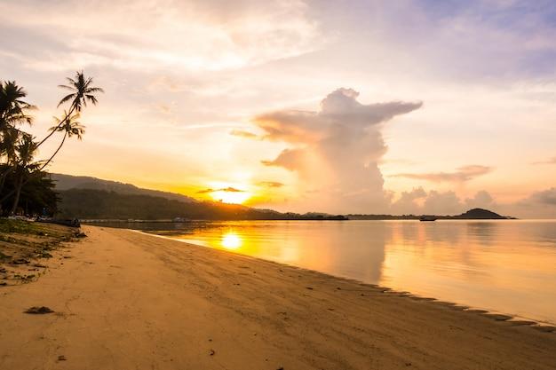 Mooie openluchtmeningsoceaan en strand met tropische kokosnotenpalm in zonsopgangtijd