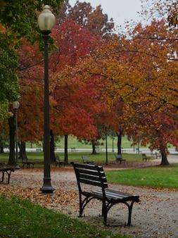 Mooie opname van een bankje in het herfstpark