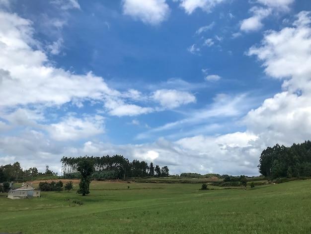 Mooie opname van een landbouwveld