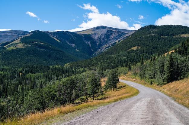 Mooie opname van een weg in de rocky mountains en groene bossen bij daglicht