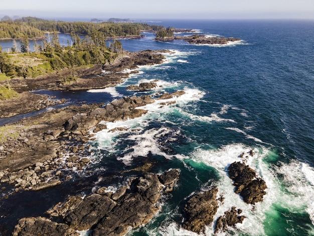 Mooie opname van een zee omringd door een bos en rotsachtige stenen