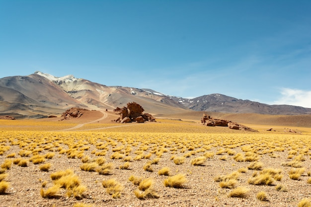 Mooie opname van woestijnlandschappen bij zonsondergang in chili
