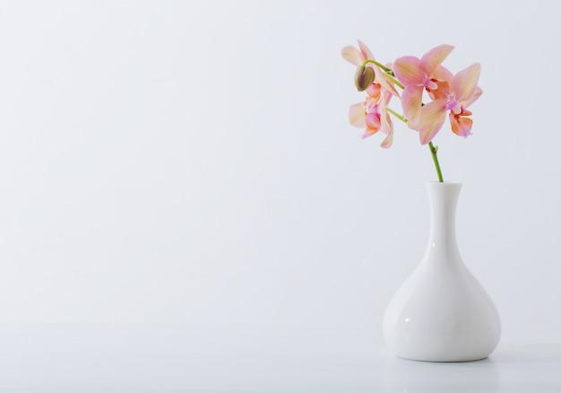 Mooie orchideeën in witte vaas op witte tafel