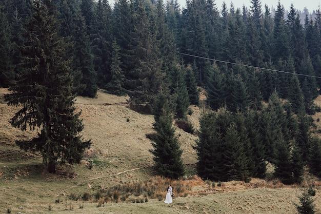 Mooie pasgetrouwden lopen op een heuvel midden tussen dennenbossen en bergen.