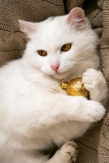 Mooie pluizige witte kat ligt op een gebreide deken en heeft een gouden kerstbal