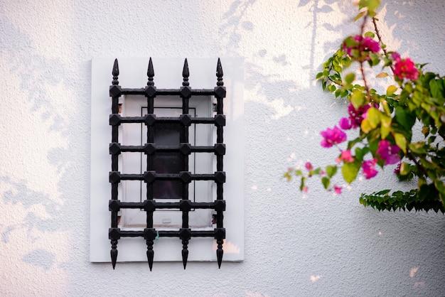 Mooie ramen met metalen staven op een witte muur met bloemen.