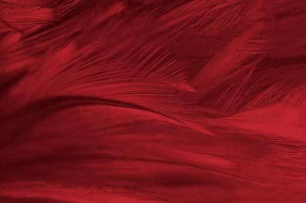 Mooie rode de textuurachtergrond van het bevederingpatroon