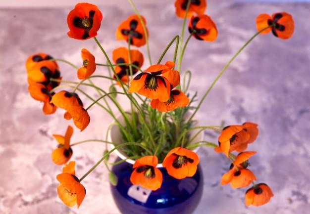 Mooie rode papaver bloemen in vaas een grijze achtergrond van het huisdecor.