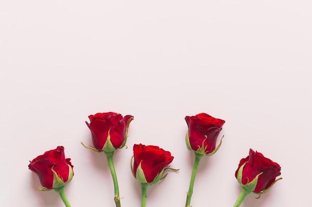 Mooie rode rozen samenstelling