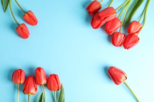 Mooie rode tulpen met groene bladeren op kleur