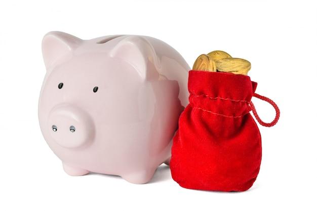 Mooie rode zak met muntstukken en spaarvarken dat op wit wordt geïsoleerd. het concept van het sparen van contant geld.