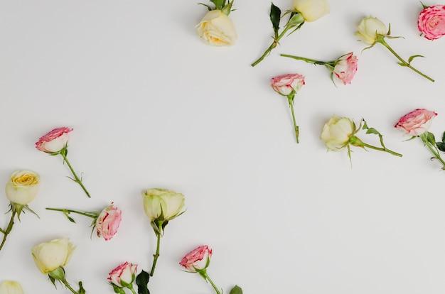 Mooie romantische rozen met kopie ruimte