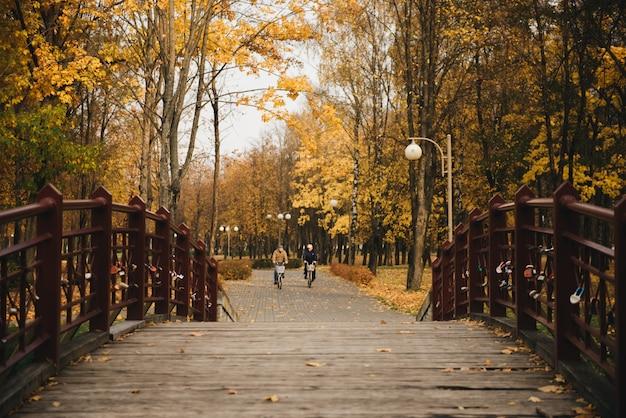 Mooie romantische steegje in een park met kleurrijke bomen en zonlicht. herfst natuurlijke achtergrond