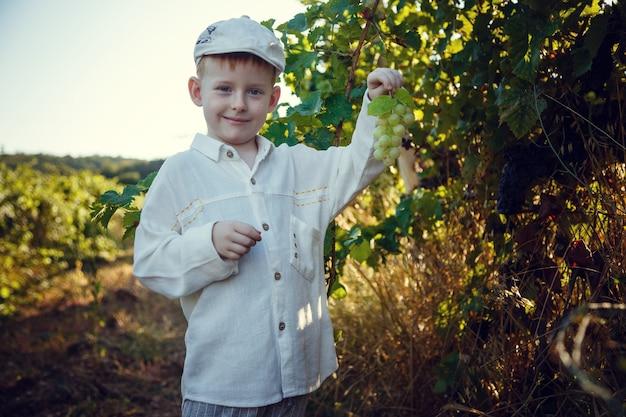 Mooie roodharige jongen met sproeten helpt in de tuin. het idee en concept van vroege scholing voor werk in de tuin van kinderen