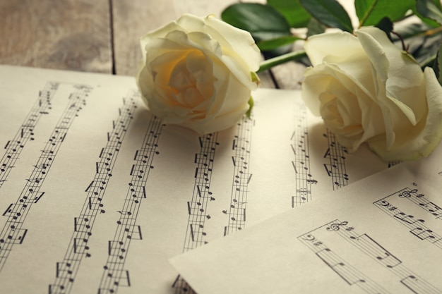 Mooie roos op de achtergrond van muziekbladen