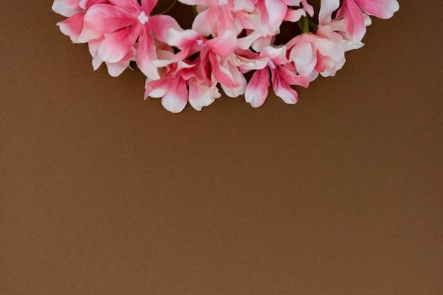Mooie roze bloem die op bruine achtergrond met exemplaarruimte wordt geïsoleerd. lente of pasen concept.