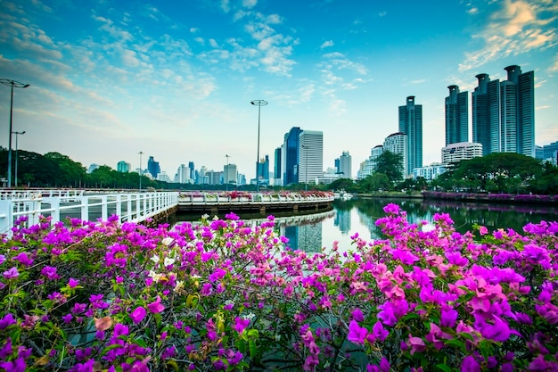 Mooie roze bloemen en de horizon van bangkok
