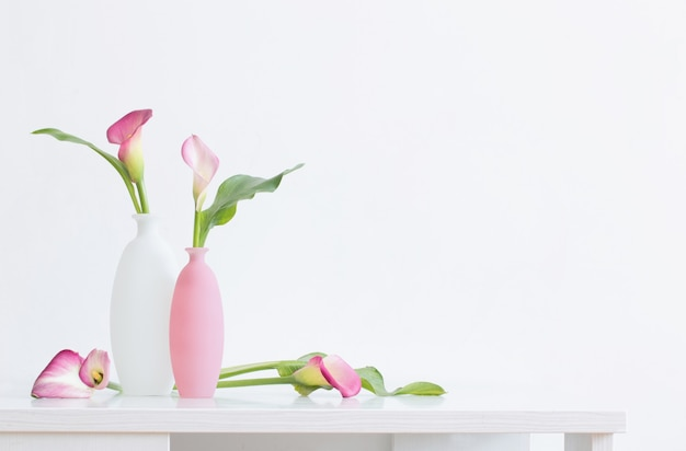 Mooie roze bloemen in vazen op witte ondergrond
