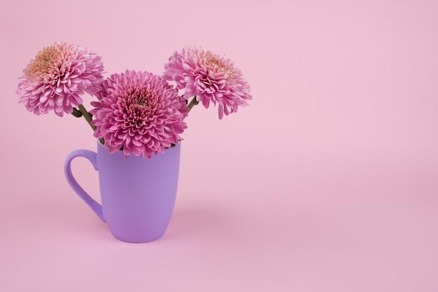 Mooie roze chrysantenbloemen in een purpere kop