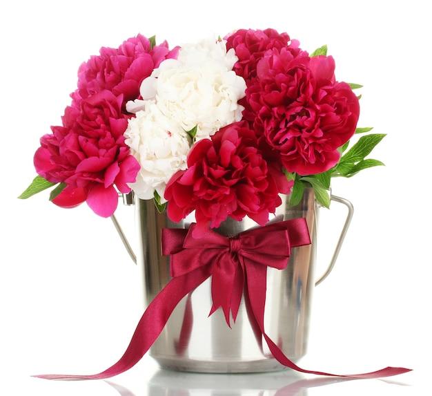 Mooie roze en witte pioenrozen in emmer met strik op wit wordt geïsoleerd