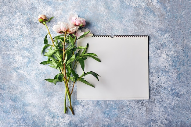 Mooie roze pioenrozen bloemen
