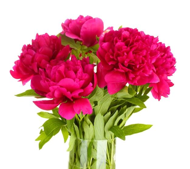 Mooie roze pioenrozen in glazen vaas met strik op wit