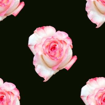Mooie roze roze bloemen. bloeiende rozen naadloze patroon. bloemen natuurlijke achtergrond.